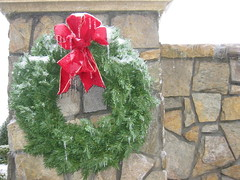 Burr-y Christmas (Living Juicy) Tags: green ice frozen durham wreath icestorm livingjuicy lj2005