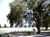 Old Fort Sill Cemetery