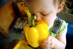 snack time (toyfoto) Tags: baby family yellow pepper snack shopping 21months diningroom playkitchen loveatfirstbite pcss