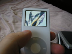 iPod nano (Oscar Mota) Tags: apple ipod nano