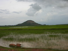 Rice paddies for miles (olive witch) Tags: abeerhoque cambodia sky