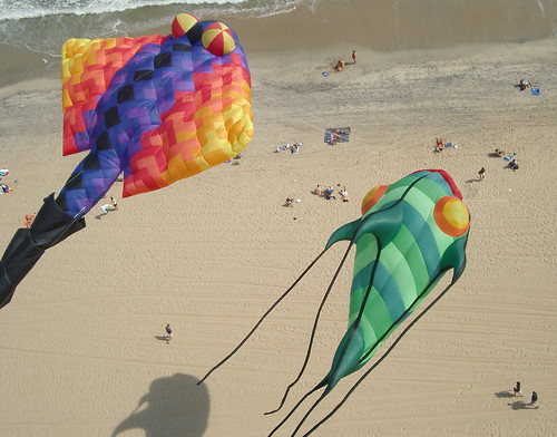 Kite Invasion
