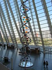50116906 efbaccb36f m L'ADN non codant ou « ADN poubelle », la matière noire du génome !