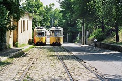 Trams on inclined road (liormania) Tags: road trolley ttc tram romania cablecar streetcar tramway iasi strassenbahn roumanie tramvay inclined  liormania bakalu