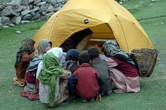 Camping: a spectator sport - by Flickmor
