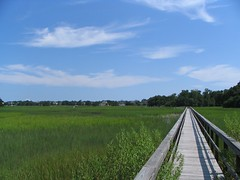 Charleston South Carolina Marsh (Erik Holmberg) Tags: 2005 south southcarolina charleston carolina marsh