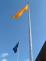 Cal Flags