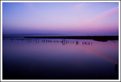 loud silence ((vividElangs - Elangovan)) Tags: pink blue sky reflection clouds sunrise fuji velvia bayarea eastbay backwaters deepblue fujivelvia marshlands bsbblue vividelangs elangs