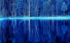 cte d'azur (Wen Nag (aliasgrace)) Tags: blue trees lake art topf25 fairytale 1025fav wow woods topv1111 creative blues loveit 2550fav catchycolorsblue