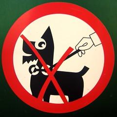 dog signs sign switzerland geneva squaredcircle genève