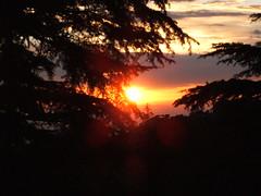 Sunset at Tushita (lillylane) Tags: india ganj mcleod