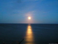 Moon shining over the sea