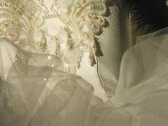 basque, detail (Joseph Robertson) Tags: tutu basque detail embroidery embroider ballet macro beads sequins glitter
