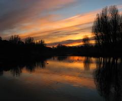 reflections (SophieMuc) Tags: trees sunset orange lake reflection deleteme6 nature munich ilovenature olympiapark saveme11