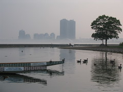 humber bay (416style) Tags: lake toronto ontario canada beach water fog buildings bay pier boat geese still picnic dragon towers chinese ducks twin palace front calm business sookie sombre lakeshore lakeontario dragonboat humberbridge humber breakwall 416 416style