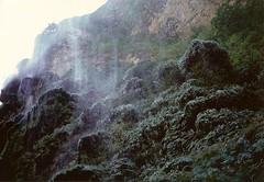 spray (omnia_mutantur) Tags: plants naturaleza green nature water rain america mexico waterfall lluvia flora agua eau chuva natura canyon spray sprinkler raining acqua piante pioggia spraying cascada messico sumidero cascata sprinkling