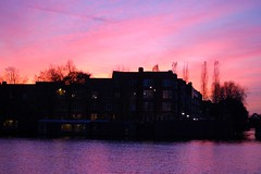 Amsterdam Sunset III (ElseKramer) Tags: elsekramer amsterdam sunset pink catchycolors backlight twilight silhouette water reflection amstel river albaluminis