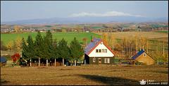 v_063__E100VS_017 (Ajaxgarden) Tags: film nature japan canon landscapes hokkaido slide ajax e100vs xgarden