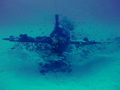#1190 tail (Nemo's great uncle) Tags: airplane geotagged underwater scuba diving aeroplane hawai'i ハワイ o'ahu オアフ島 corsair hi wreck ダイビング corsari 水中 chancevoughtf4u geo:lat=21254283 geo:lon=157730833