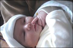 Baby-face (Etolane) Tags: baby cute bb nouveaun lilysoleil nourisson
