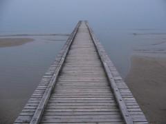 way to? (Nicola Zuliani) Tags: fog nicola foggy nebbia infinite depressive jesolo nizu zuliani nicolazuliani nizuit nnart nnart654 wwwnizuit