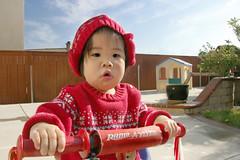 Radio Flyer (arkworld) Tags: playing bike backyard sydney pcss weeklyatplay public4now arkkid2