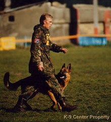 Shutzhund competition
