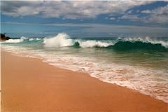 Big Beach (Makena), Maui Hawaii (roddh) Tags: film beach yellow topv111 big sand topv555 surf break shell maui surfing shore 1989 makena shorebreak bodysurfing plunging roddh
