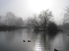 Winter Mist 2 (AJR2006) Tags: park uk trees england mist tree water canon university a520 parks powershot oxford
