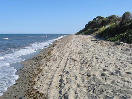 חופים ארוכים בקורסיקה