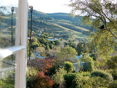 Window to the world [*Explored :-)] (Snorkle-suz) Tags: window view hills trees autumn reflection landscape bird windowframe newzealand nz aotearoa nikoncoolpixl120 holiday plant nature explored inexplore landforms