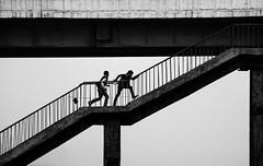 ascend II (1/4th) Tags: street bridge blackandwhite bw india boys monochrome silhouette stairs climb nikon geometry agra minimal highkey minimalism nikkor minimalist ascend cwc uttarpradesh nikon80200mmf28d 80200mmf28dnew   d7000 yamunabridge chennaiweekendclickers cwc384