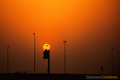 Into the Sun !! (GoCiP) Tags: street pakistan sunset summer sun silhouette electric photography chopper streetphotography photojournalism helicopter poles lahore electricpole summerday gocinematic gocip zeeshangondal