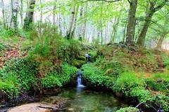 PNPGers, Minho, Portugal (aclopes50) Tags: parque verde natural paisagem vale bosque campo turismo mato reserva minho penedageres passei
