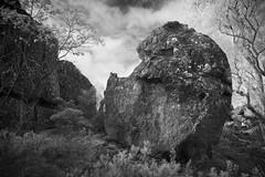 Skull-faced Rock (T. Flack) Tags: blackandwhite bw rock canon ir australia victoria ii infrared l hanging 24mm tse