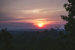 ankor wat (nathalietjernberg) Tags: ankorwat djungel