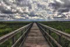 Prairie Overlook on 441 (flutterbye216) Tags: statepark bridge sky canon eos highway florida gainesville 441 overlook hdr paynesprairie photomatix 60d challengeclubchampion