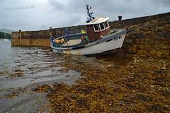 Julie M (Zak355) Tags: scotland pier quay fishingboat juliem rothesay isleofbute portbannatyne ro81