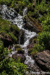 July 12, 2015 - Water flows down a mountainside in Rocky Mountain National Park. (Shawn Jones)