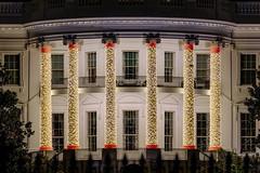 The White House's Christmas Lights in Washington DC (Insite Image) Tags: christmas christmaslights columns dc districtofcolumbia holidaydecorations holidays nightphotography portico washington washingtondc whitehouse architecture winter holidaylights outside insiteimage presidentspark
