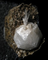 Analcime Crystal With Natrolite (Sea Moon) Tags: mineral white garnet specimen mtsthilairequebec thumbnail rock needles acicular spray zeolite