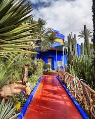 (R Stabler) Tags: marrakech marrakesh images photo market souk light maroc morocco africa colour artisan arabesque travel desert palace ysl moet local authentic