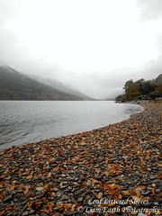 Leaf Littered Shores (liamearth) Tags: earth scotland loch lake shore sky clouds mountain trees fog sceneic wind ripple silhouette wilderness beautiful sea view outdoor water grass voil glen western perthshire leaves leaf littered selectivecolour