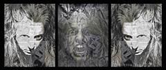 Fierceness (Vanessa Vox) Tags: fierceness selfie selfportrait emotion wild savage agressivity newspapers vanessavox triptychs