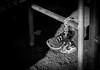 SAFETY FIRST (normanthilius) Tags: shoes black white runner marathon schuhe hannover machsee deutschland germany urban street life