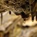 Prehistoric cave