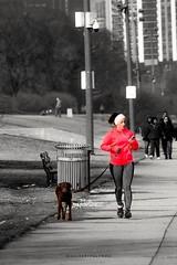 PHOTO PREMIUM - SELO TOP CLICK #architecturephotography #bestpicture #casacor #decora #decoração #decoracaodeinteriores #decorar #decorcasa #chicago #chicagogram #chicagopix #grantpark #ilovechi agora #insta_chicago #livingroom #moldura #parque #people # (helderpalermo) Tags: chicagogram casacor chicagopix selotopclick predio decora ilovechi instachicago architecturephotography parque decoração sala bestpicture posters grantpark decorcasa decoracaodeinteriores livingroom moldura decorar pessoas chicago pictureoftheday quadrosdecorativos quadros photographer top takingoverchoovsechicago posterart people