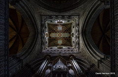 9. Ceiling (St David's Cathedral) (davidh46) Tags: wales cathedral pembrokeshire stdavidscathedral