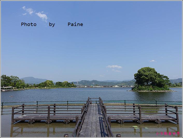 和歌山大池遊園-平池綠地公園 (25).JPG