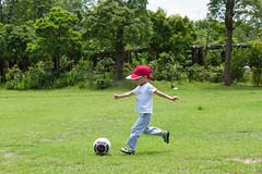 BM7Q4065.jpg (Idiot frog) Tags: trees boy cute adam green grass leaves yard canon ball eos restaurant kid child soccer taiwan     playball               1dx newtaipei